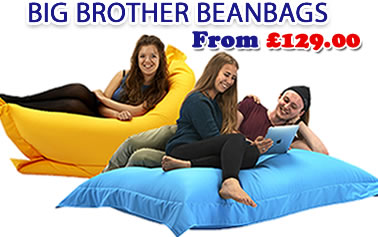 Big brother beanbags